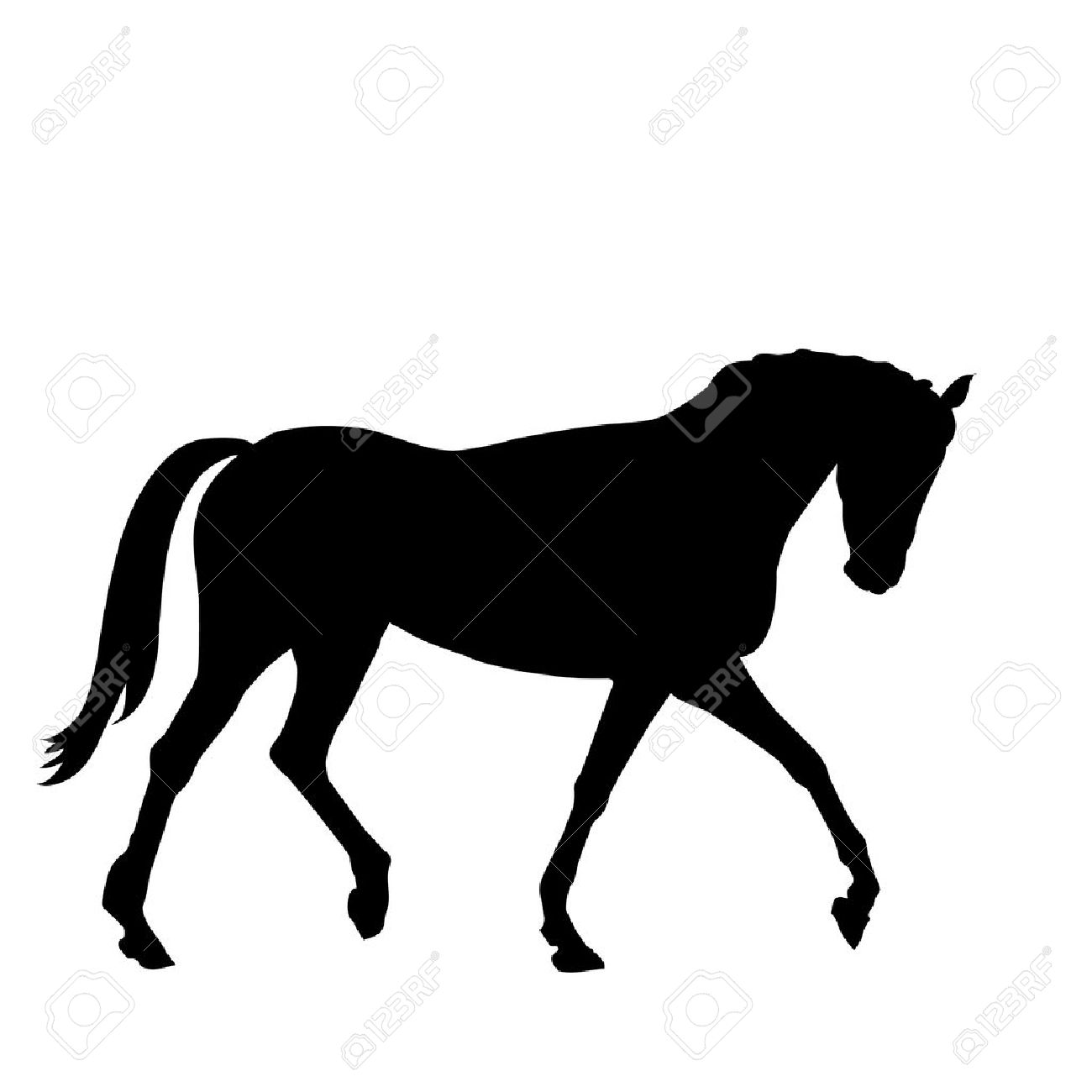 beautiful black horse silhouette isolated on white background Stock Vector - 18959089