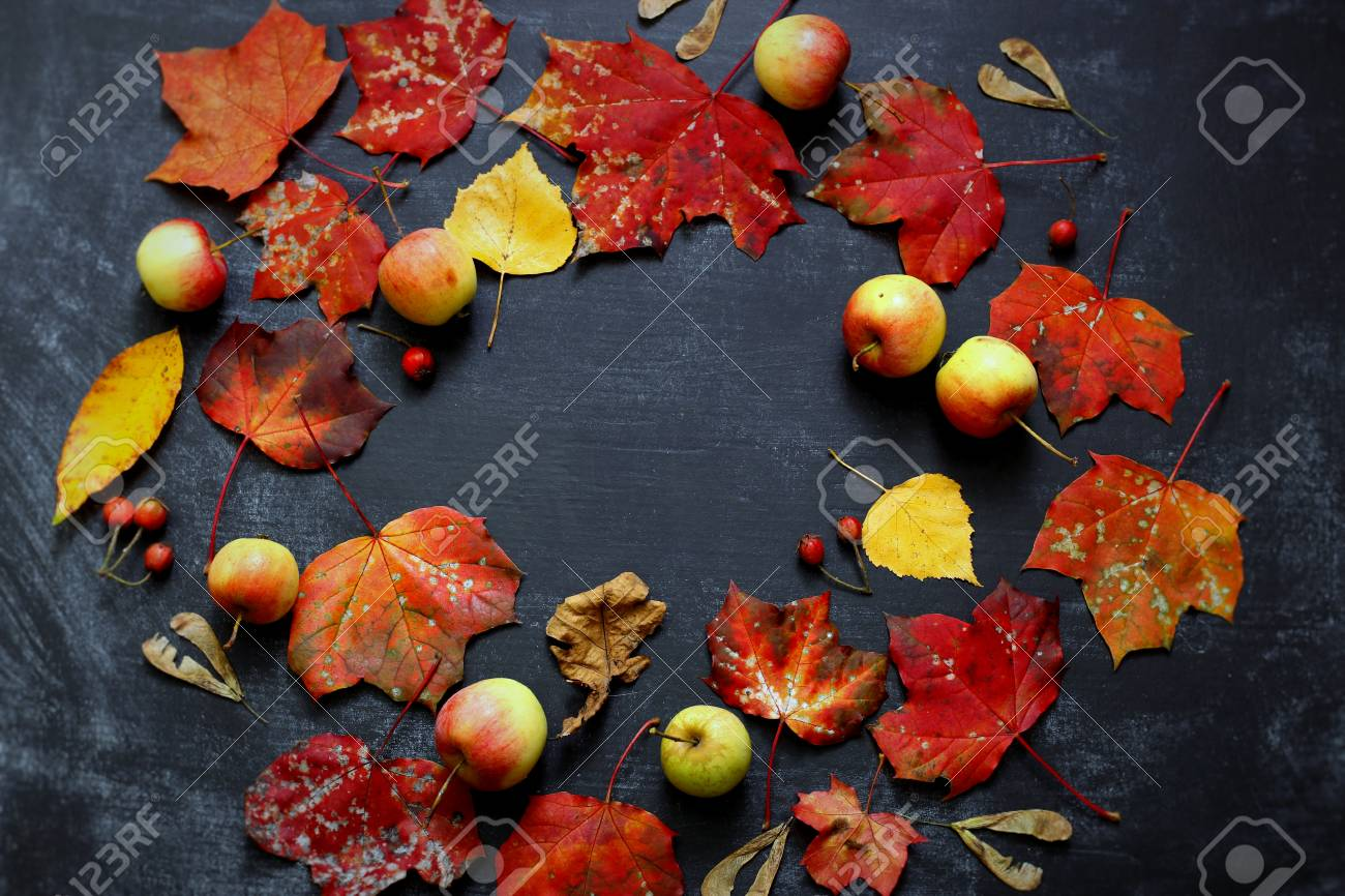 Gelb, Grün Und Rot Baum Herbst Blätter, Äpfel Und Beeren Rahmen ...