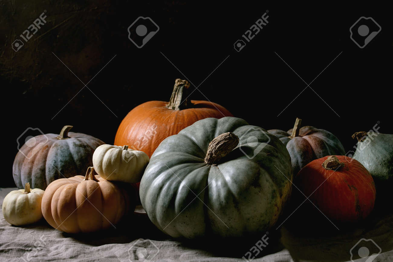 Colorful pumpkins collection different size and cultivars on linen tablecloth. Dark still life. Autumn harvest. - 171903102