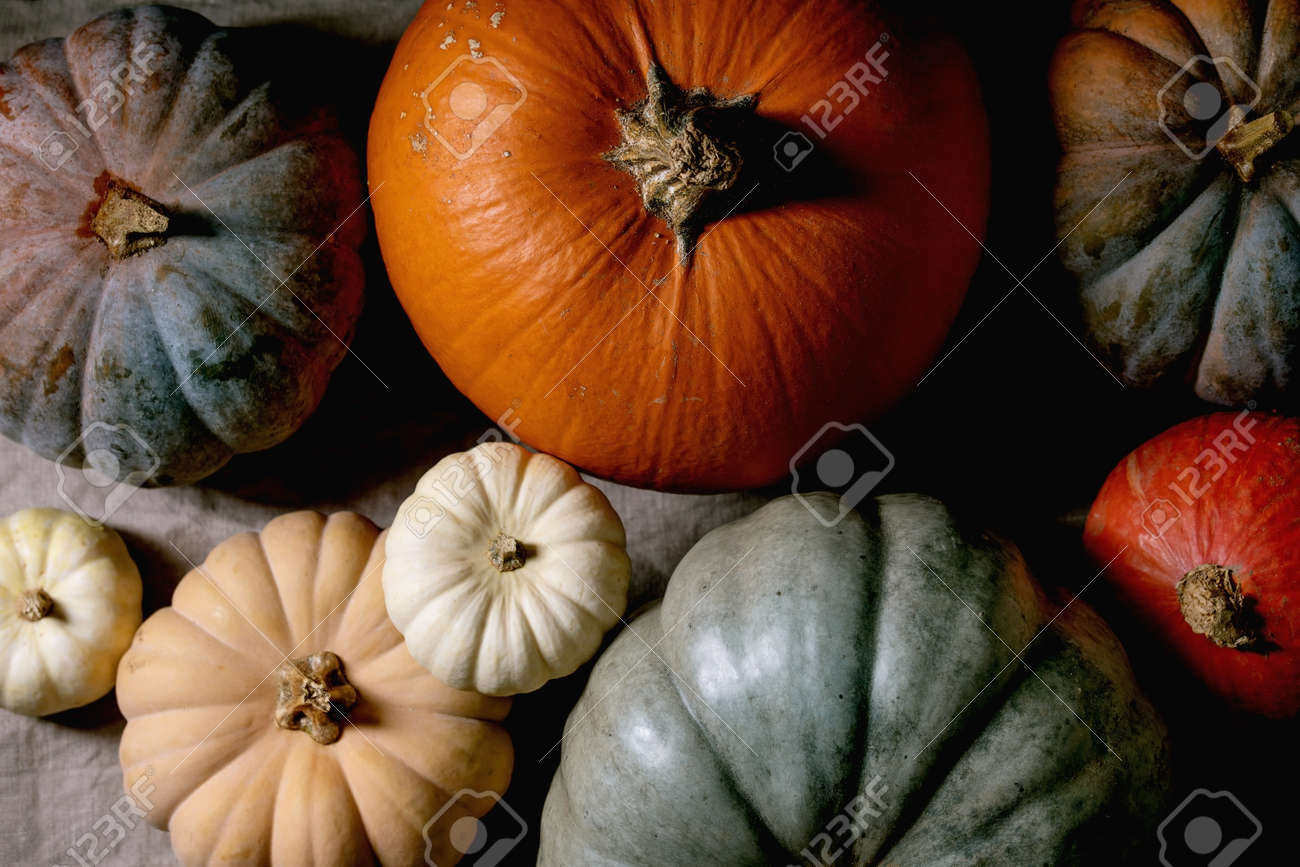 Colorful pumpkins collection different size and cultivars on linen tablecloth. Flat lay. Autumn harvest. - 171902710