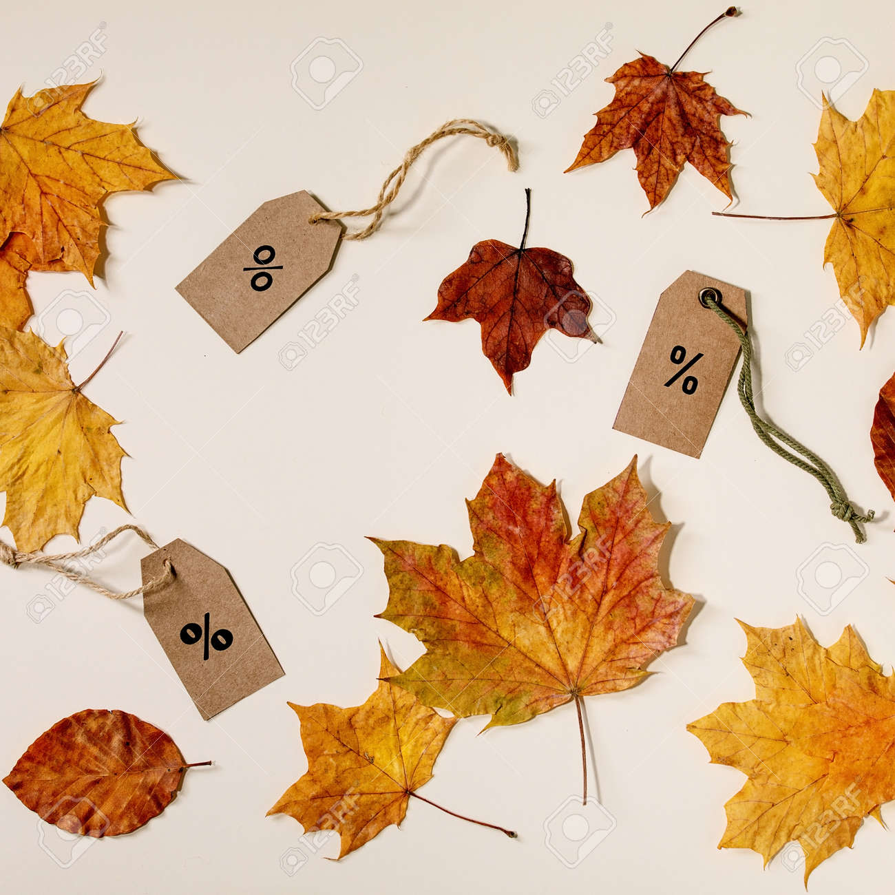 Autumn sale concept. Cardboard labels with percents, variety of yellow autumn leaves over beige background. Flat lay. Square - 173052975