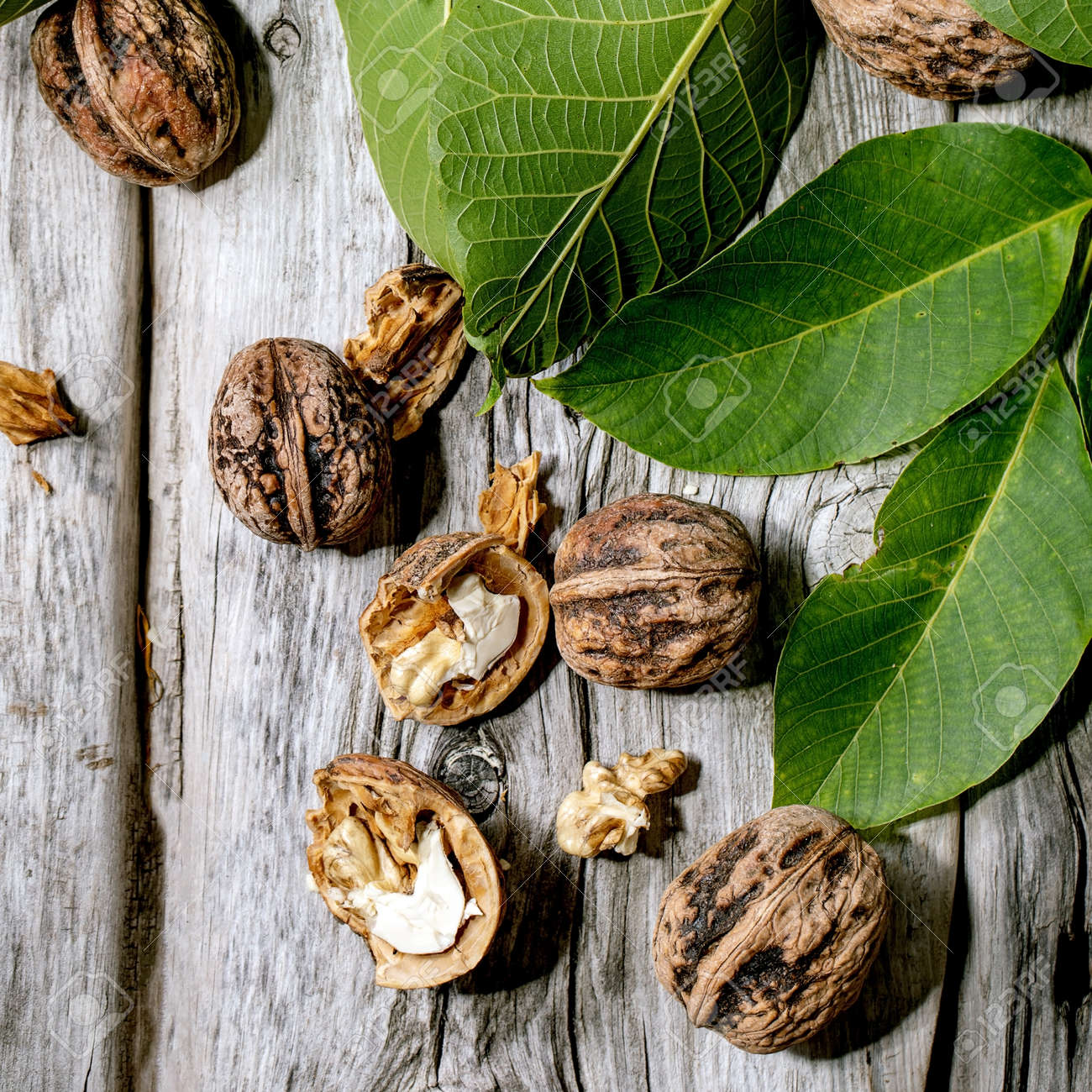 Organic walnuts, whole and broken, with green leaves of walnut tree over old wooden background. Flat lay, space. Square - 173054181