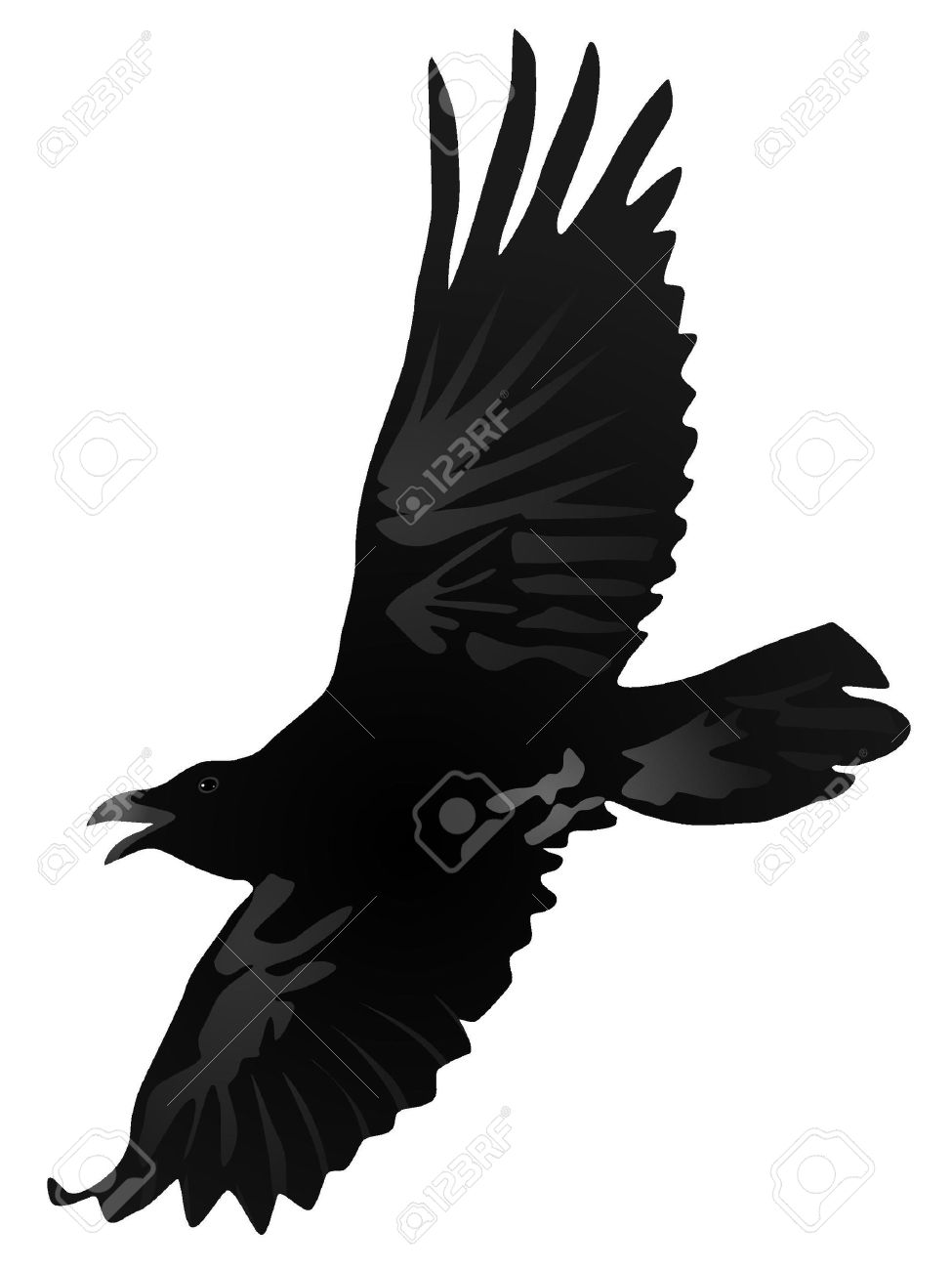 Vector drawing a flying crow Stock Vector - 11897494