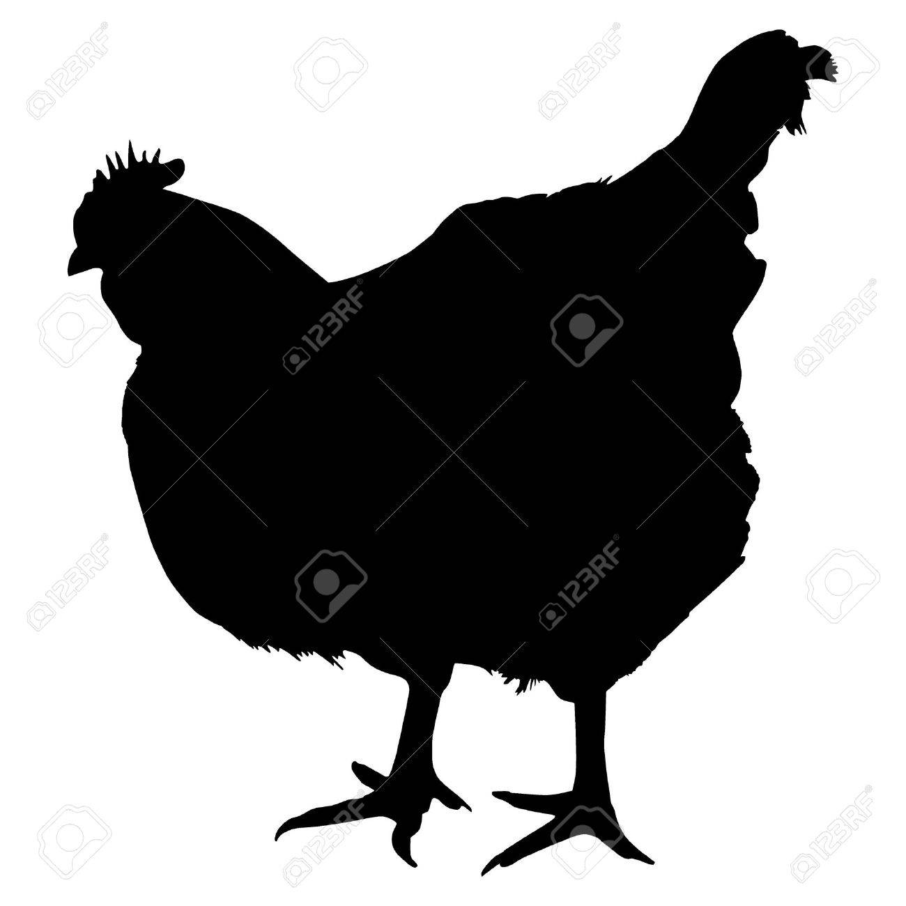 Silhouette of a chicken Stock Vector - 12494294