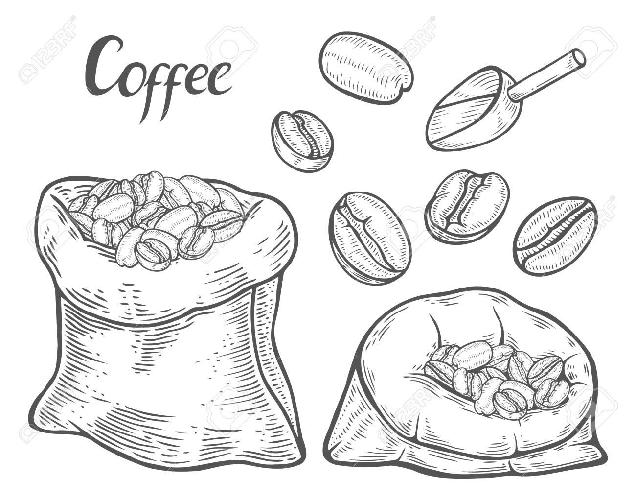 In Caffè Mano Pmvgsuzq Borse Vettoriale Set Chicchi A Disegnate Di 5q4RL3Aj