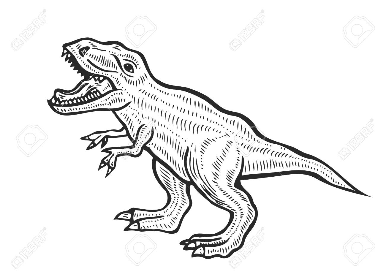 Hand-drawn carnivorous dinosaur. Angry tyrannosaurus rex with open huge mouth, sketch. Animal vector illustration - 91872150