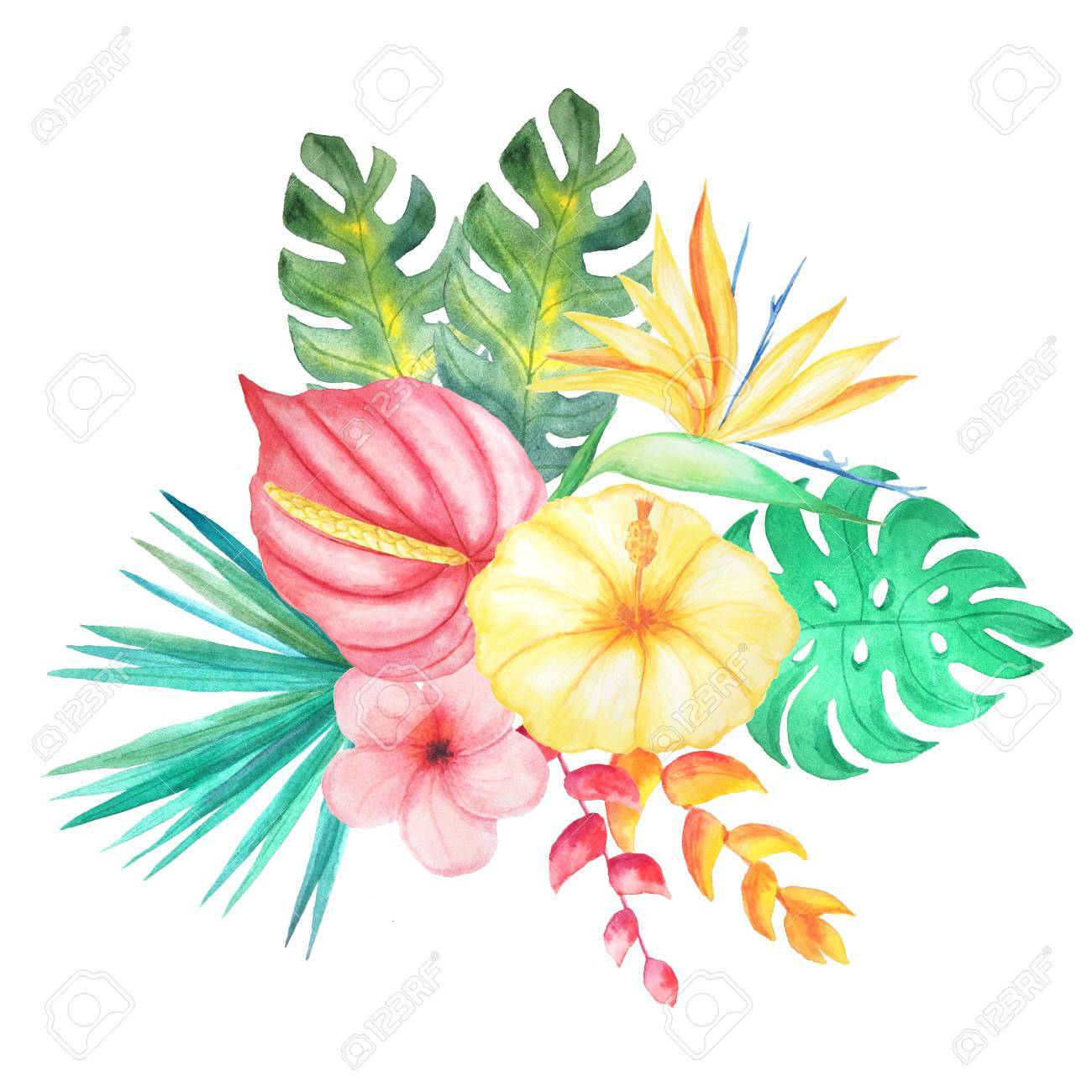 set of watercolor hand painted tropical flowers leaves and plants rh 123rf com