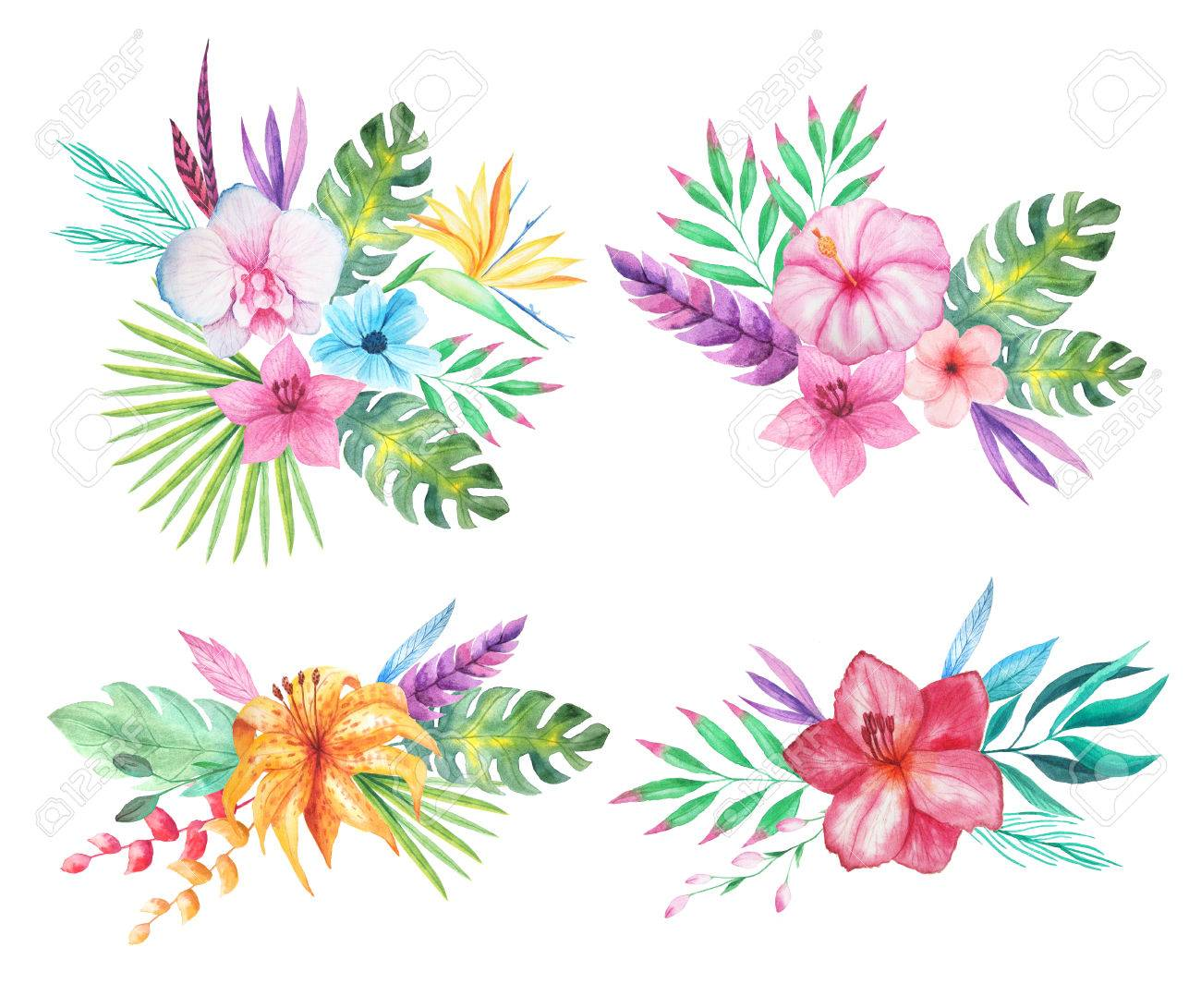 set of watercolor hand painted tropical flowers leaves and plants