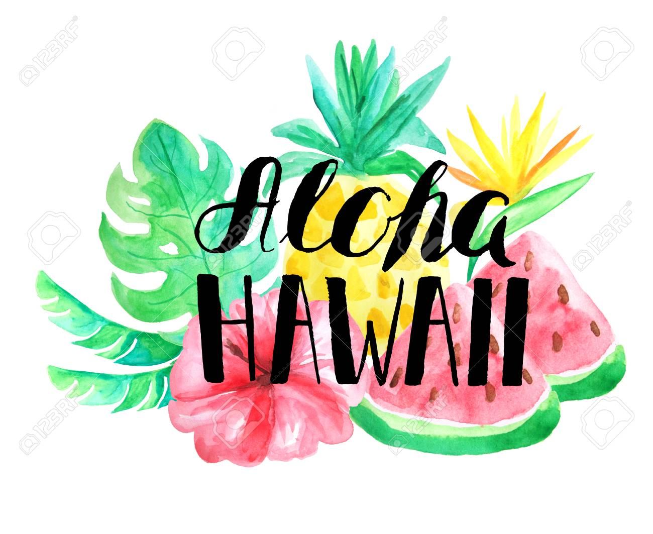 aloha hawaii lettering set of watercolor tropical composition