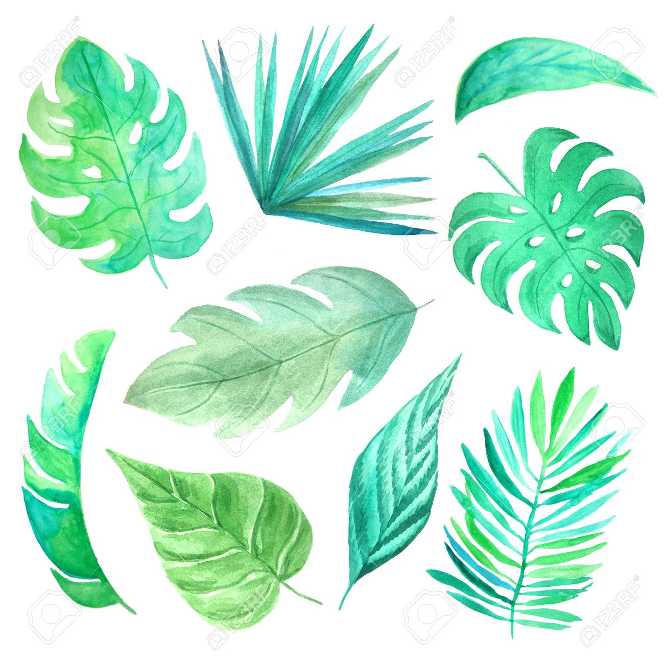 watercolor hand painted tropical leaves and plants green jungle