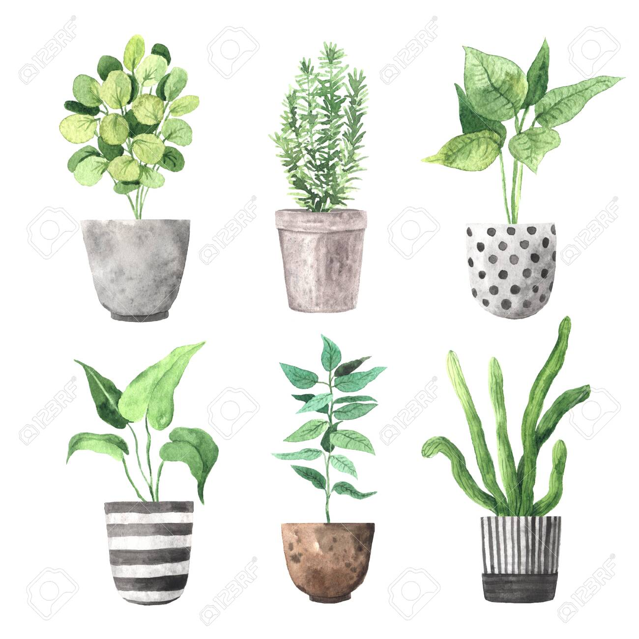 Watercolor Hand Painted House Green Plants In Flower Pots Set Stock Photo Picture And Royalty Free Image Image 134782484