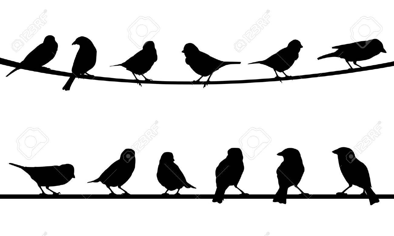 Birds On Wire Royalty Free Cliparts, Vectors, And Stock Illustration ...