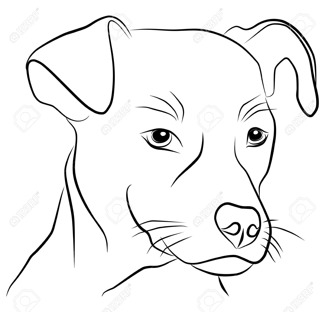 Dog Head Isolated Freehand Vector Illustration Royalty Free