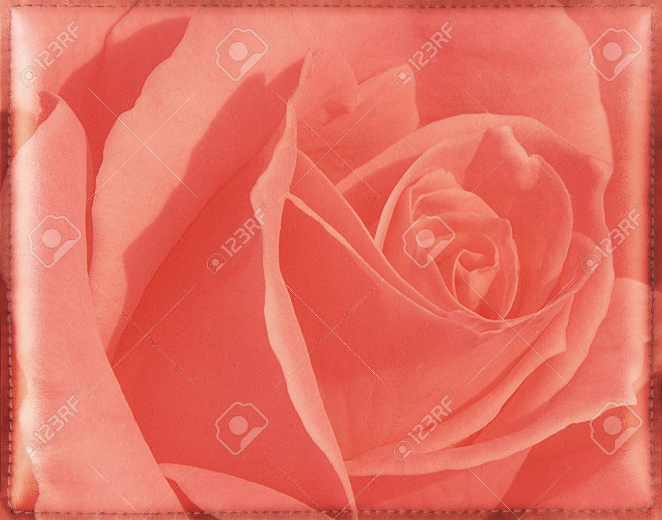 Shiny pink vintage floral background with rose flower  Soft and smooth leather texture with stitched frame  Framework design for your content Stock Photo - 22769171