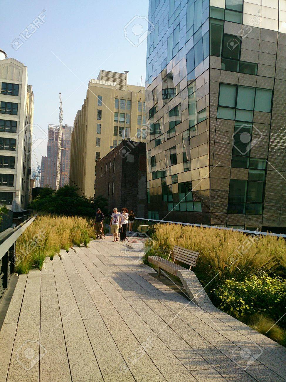 The Highline Garden In New York Stock Photo Picture And Royalty