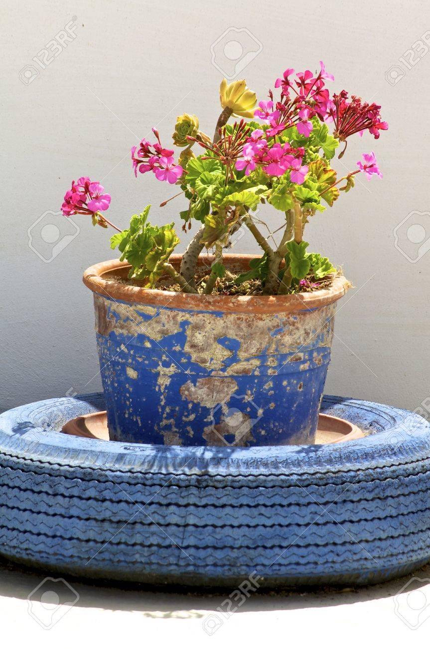 Pot De Fleur Avec Des Pneus pot de fleurs avec des pneus de voiture sur la terrasse en cr�te