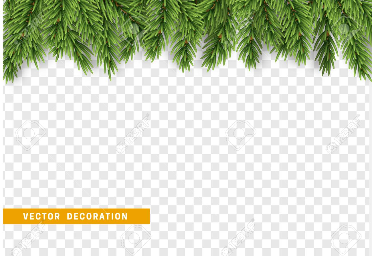 Christmas border with fir branches. Isolated on transparent background