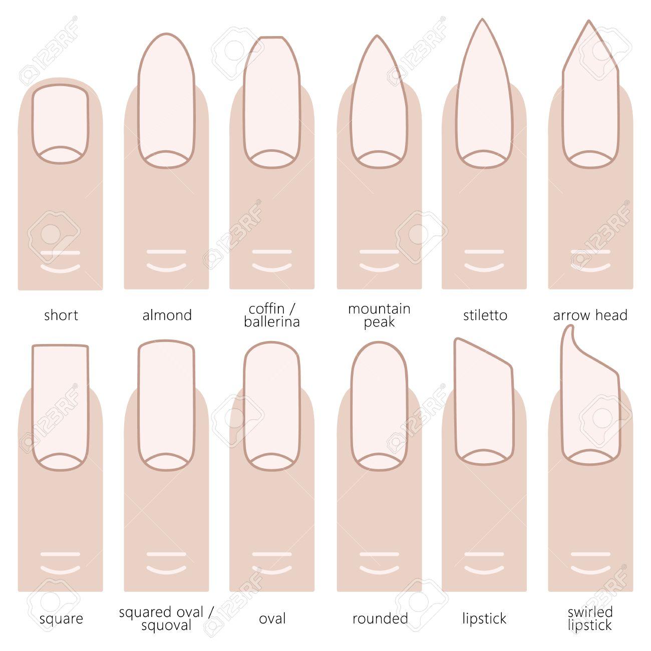 verschiedene nagelformen - fingernägel modetrends. vektor