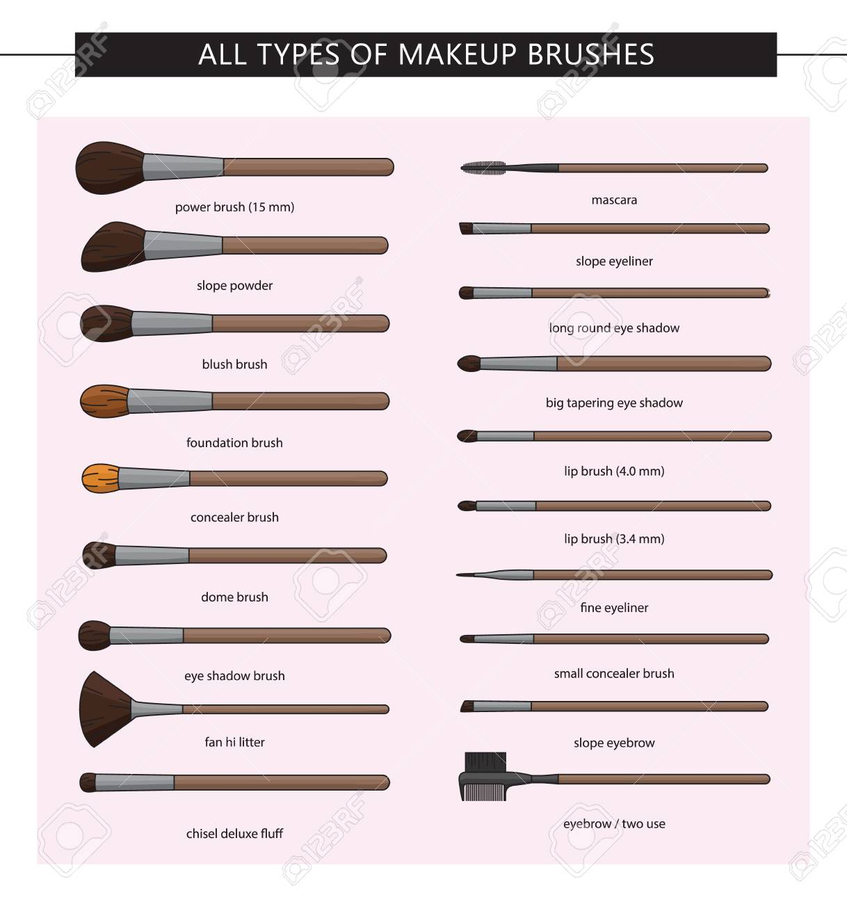 All types of makeup brushes. Vector set. Makeup brushes kit.Iisolated