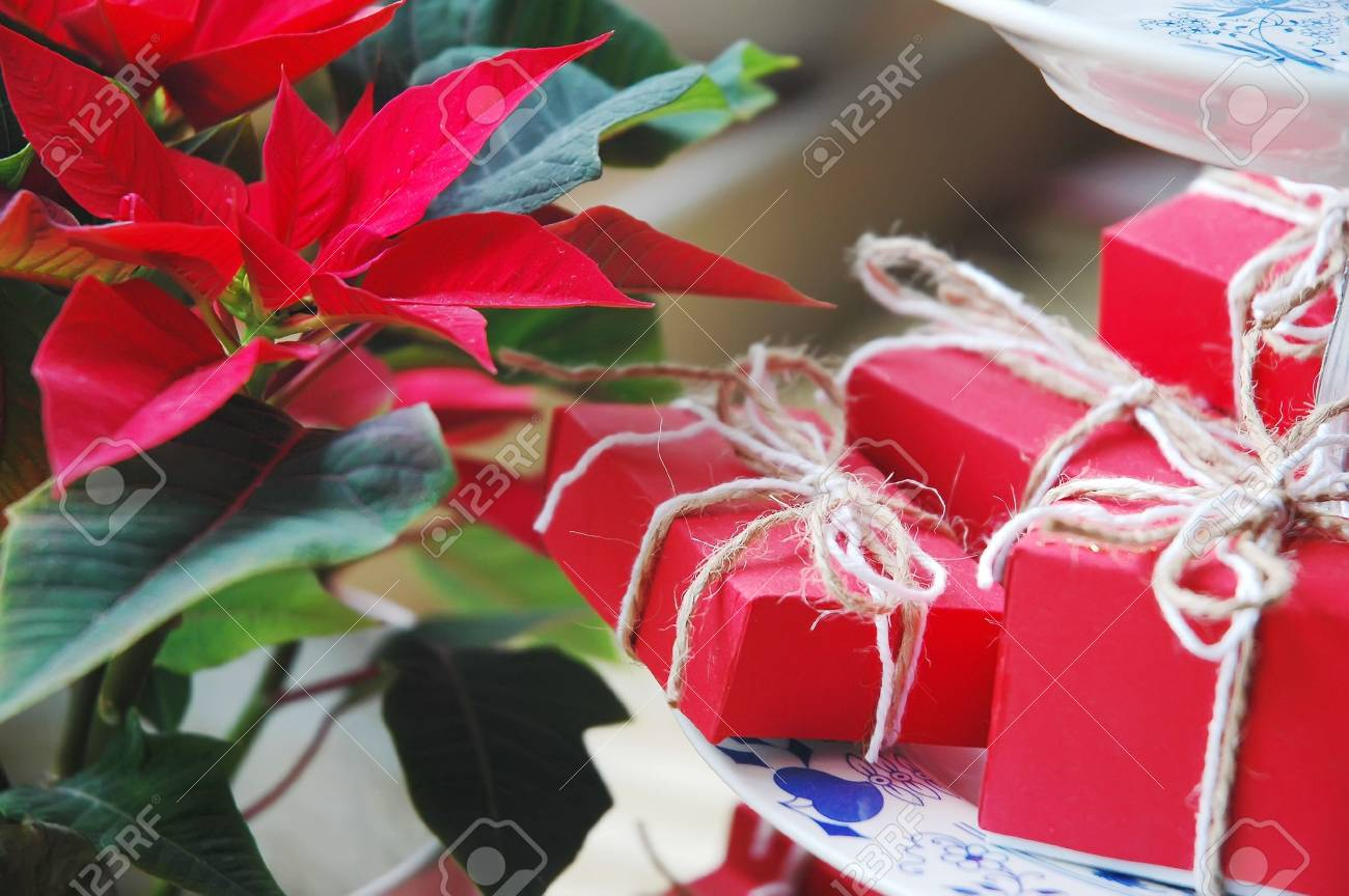 Detailed Image - Poinsettia and small Christmas gifts