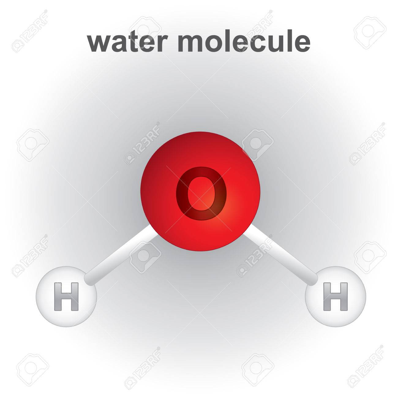Illustration representing structure and composition of the water molecule chemical. ideal for educational books and institutional materials - 51237705