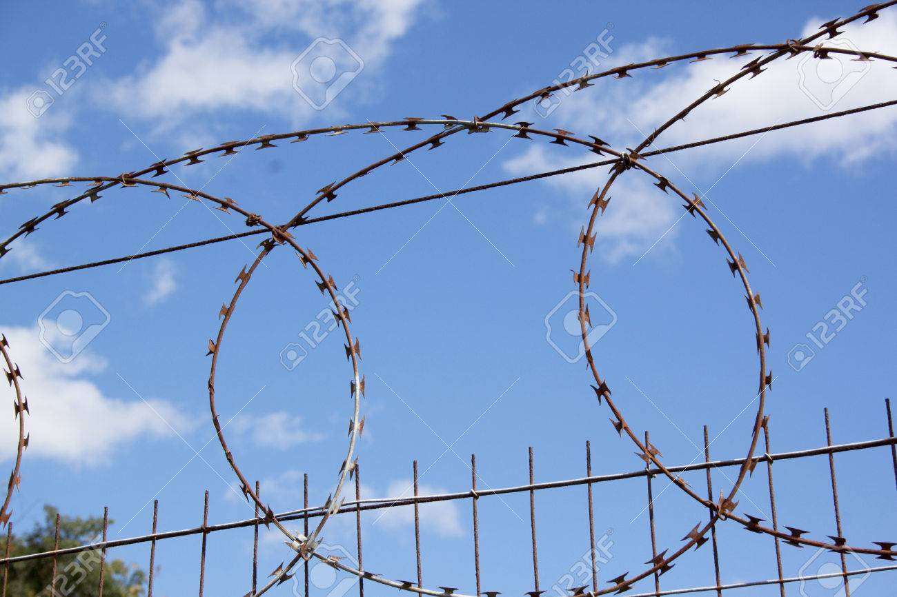 Coiled Razor Sharp Barbed Wire On Fence Against Blue Sky Stock Photo ...