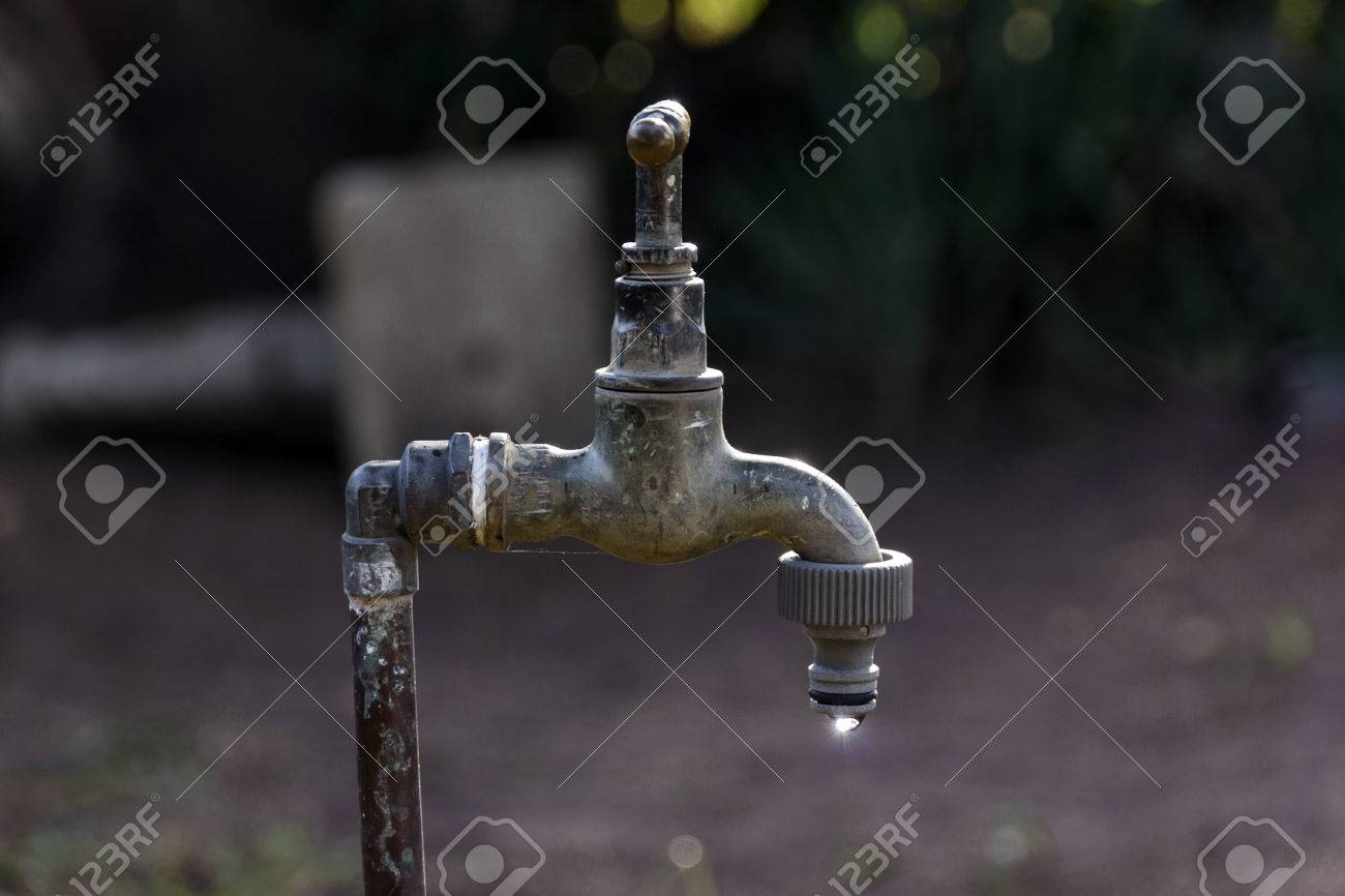 garden faucet. vintage leaking garden faucet with hose pipe connection in setting stock photo - 61133285 w
