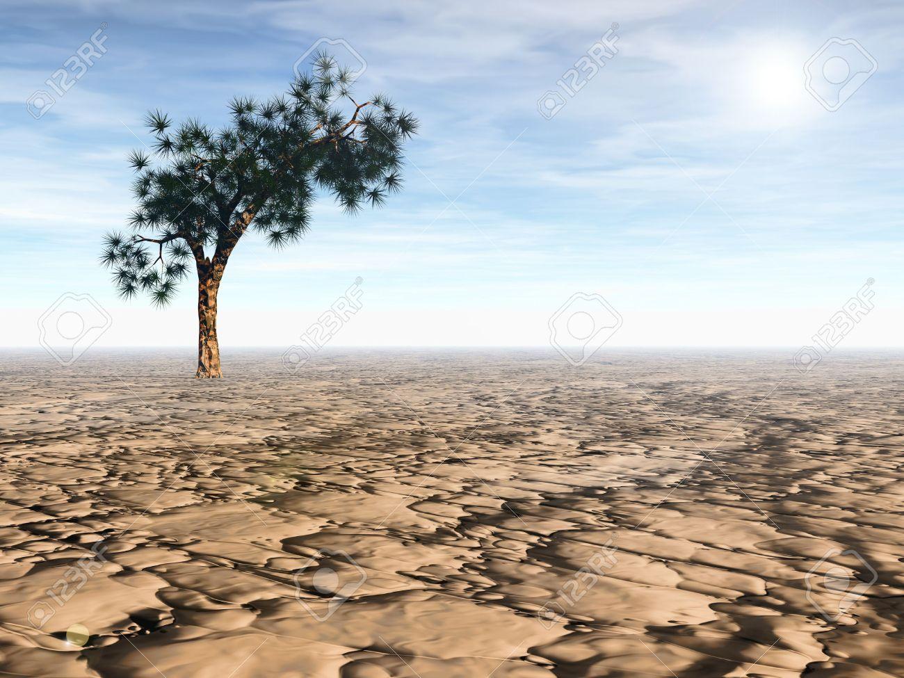 3D rendering of an isolated Joshua tree in arid desert under bright sun Stock Photo - 6854824