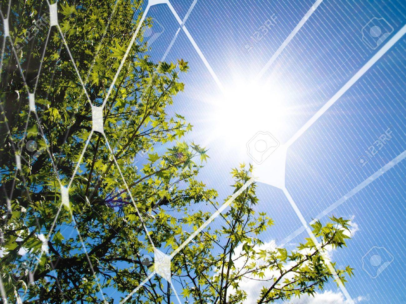Tree at spring against the sun and photovoltaic panel Stock Photo - 7856238