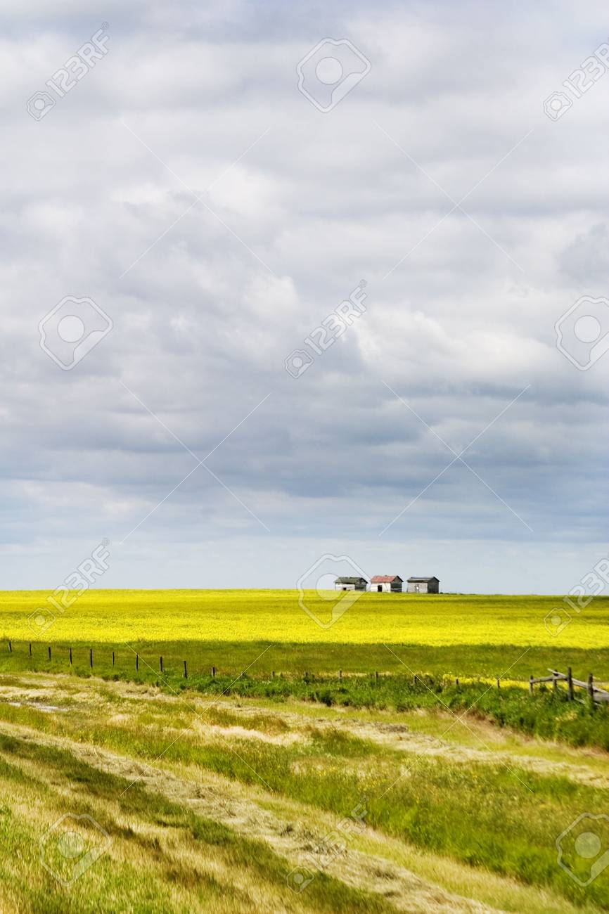 Prairie Landscape with some old granaries in the distance. Stock Photo - 271951