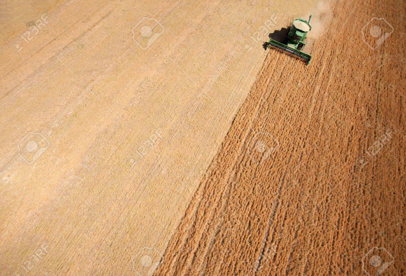 Background texture aerial of a combine harvesting lentils Stock Photo - 10393442
