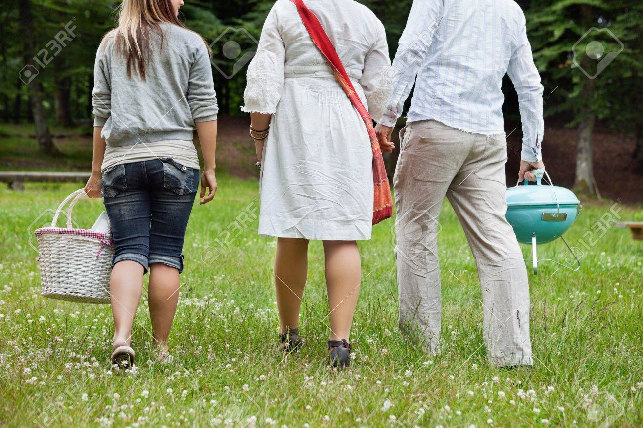 Rear view of friends in casual wear on a weekend picnic in forest park Stock Photo - 14508261