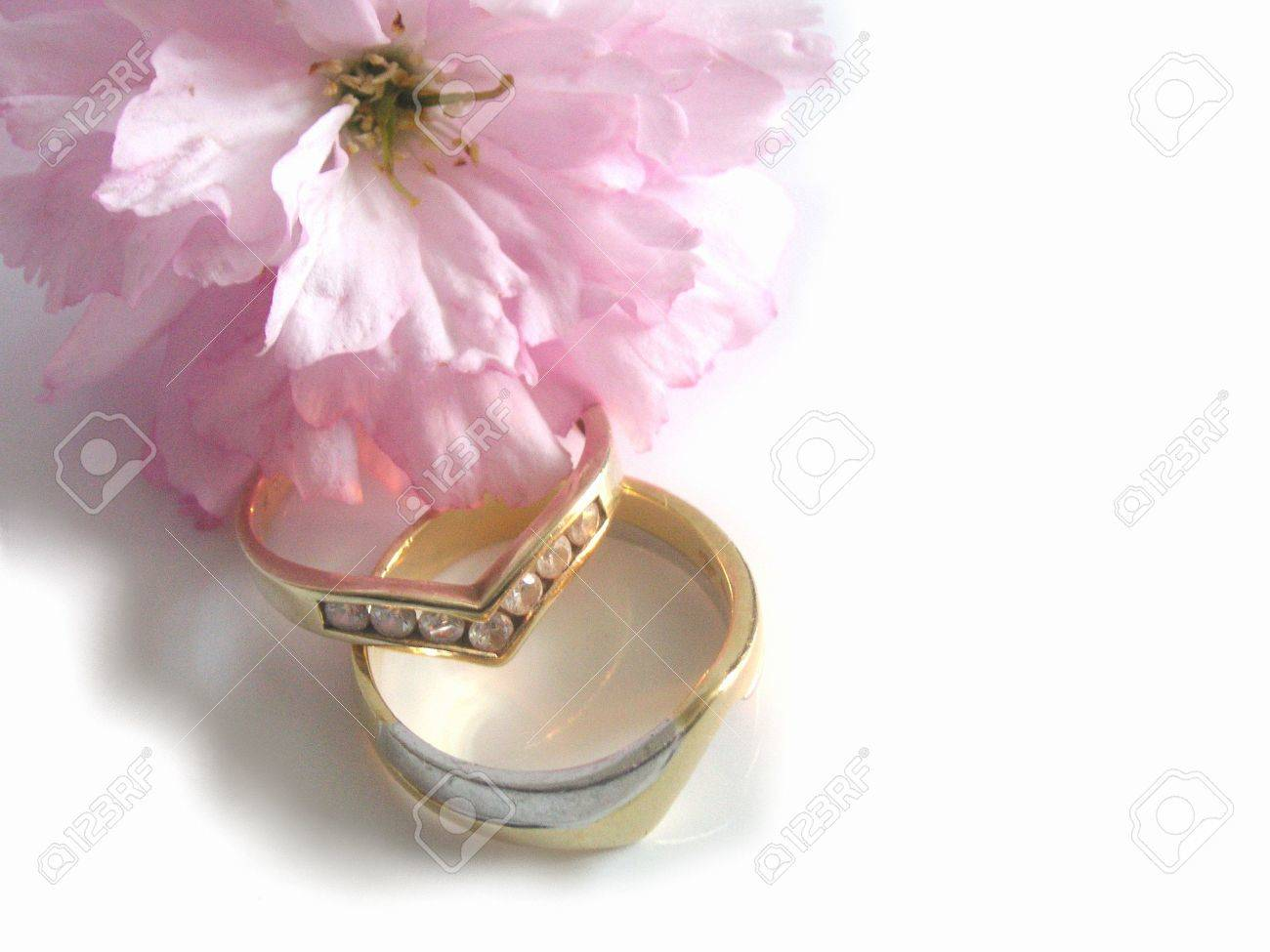 Single Cherry Blossom And Wedding Rings Stock Photo, Picture And ...