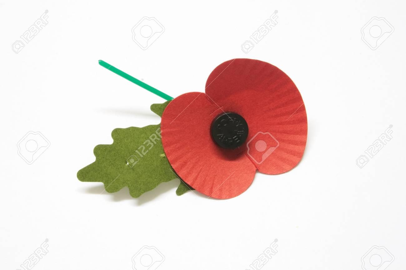 rememberance poppy over a light background Stock Photo - 2059875