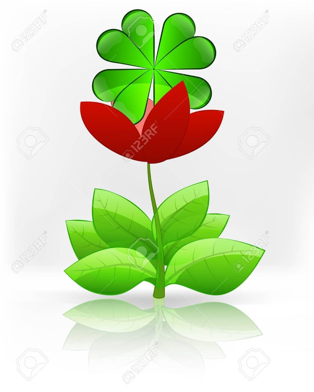 Fiori Quadrifoglio.Vettoriale Felicita Quadrifoglio In Fiore Rosso Fiore Su Bianco