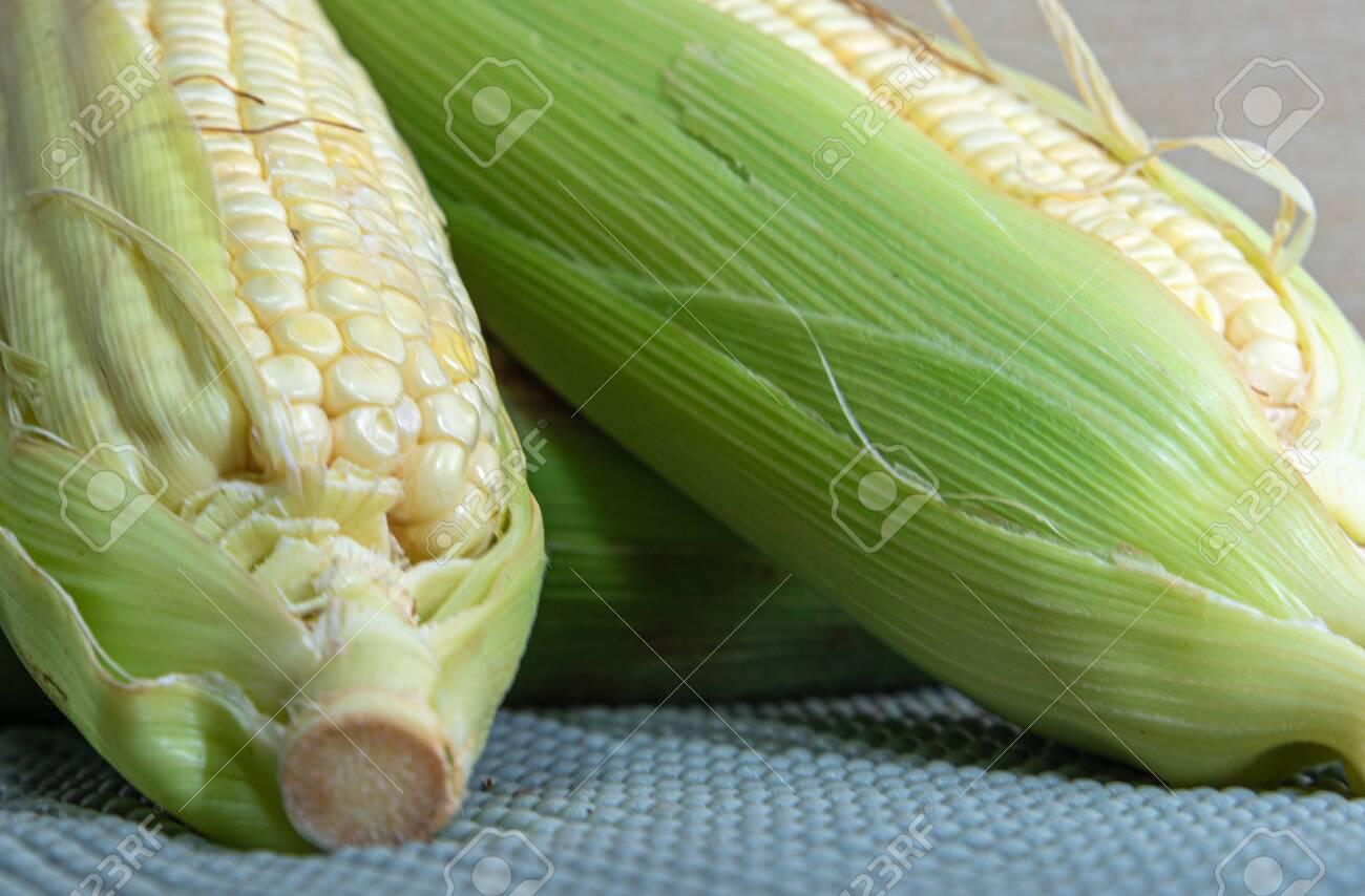 Corn cobs (Zea mays). Brazilian delicacy. June party food. Brazilian cuisine dish cooked green corn. Sweet corn. Ingredient to make curu and mush. - 153838887