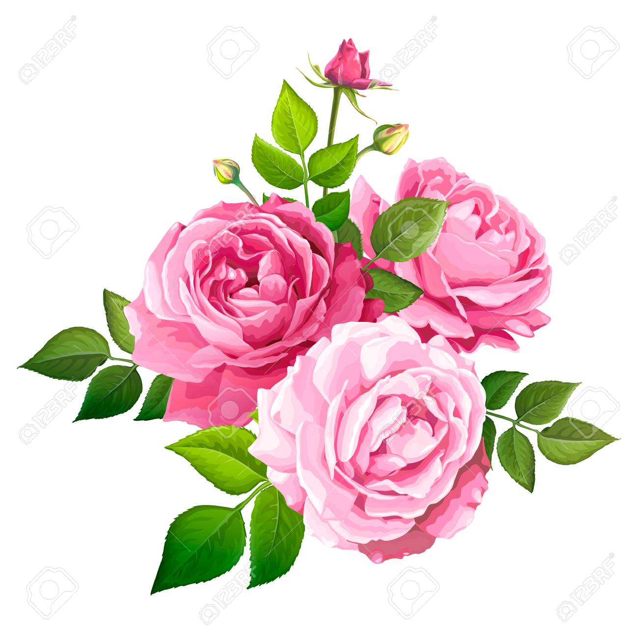 Beautiful Bouquet Flowers Of Pink Blooming Roses With Leaves Royalty Free Cliparts Vectors And Stock Illustration Image 127180363