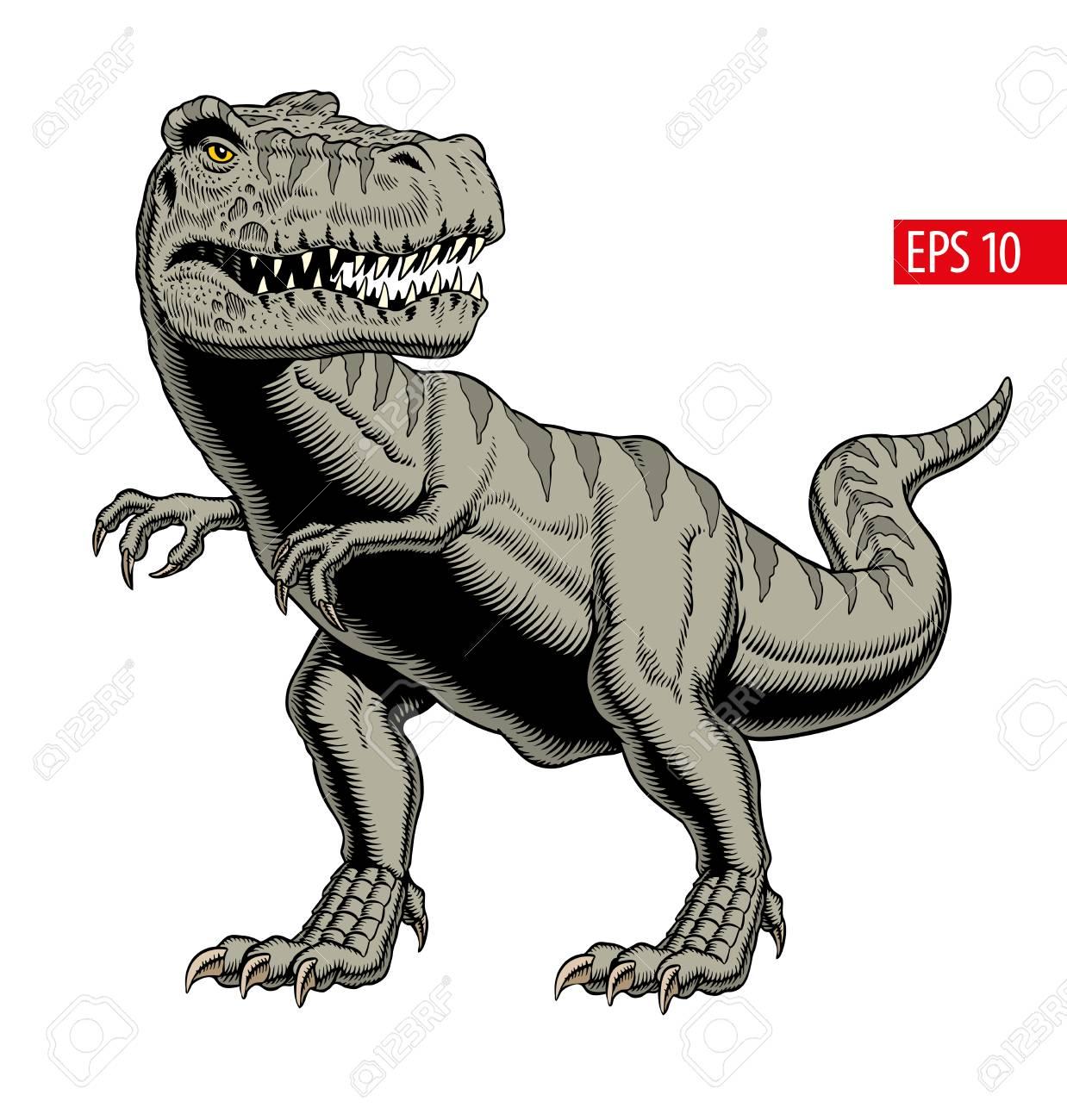 Tyrannosaurus rex or t rex dinosaur isolated on white. Comic style vector illustration. - 124637898
