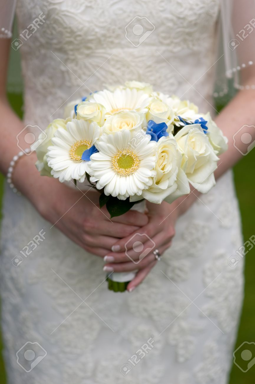 Bouquet Sposa Gerbere.Bride Holding A Wedding Bouquet Of White Roses And Gerbera Stock