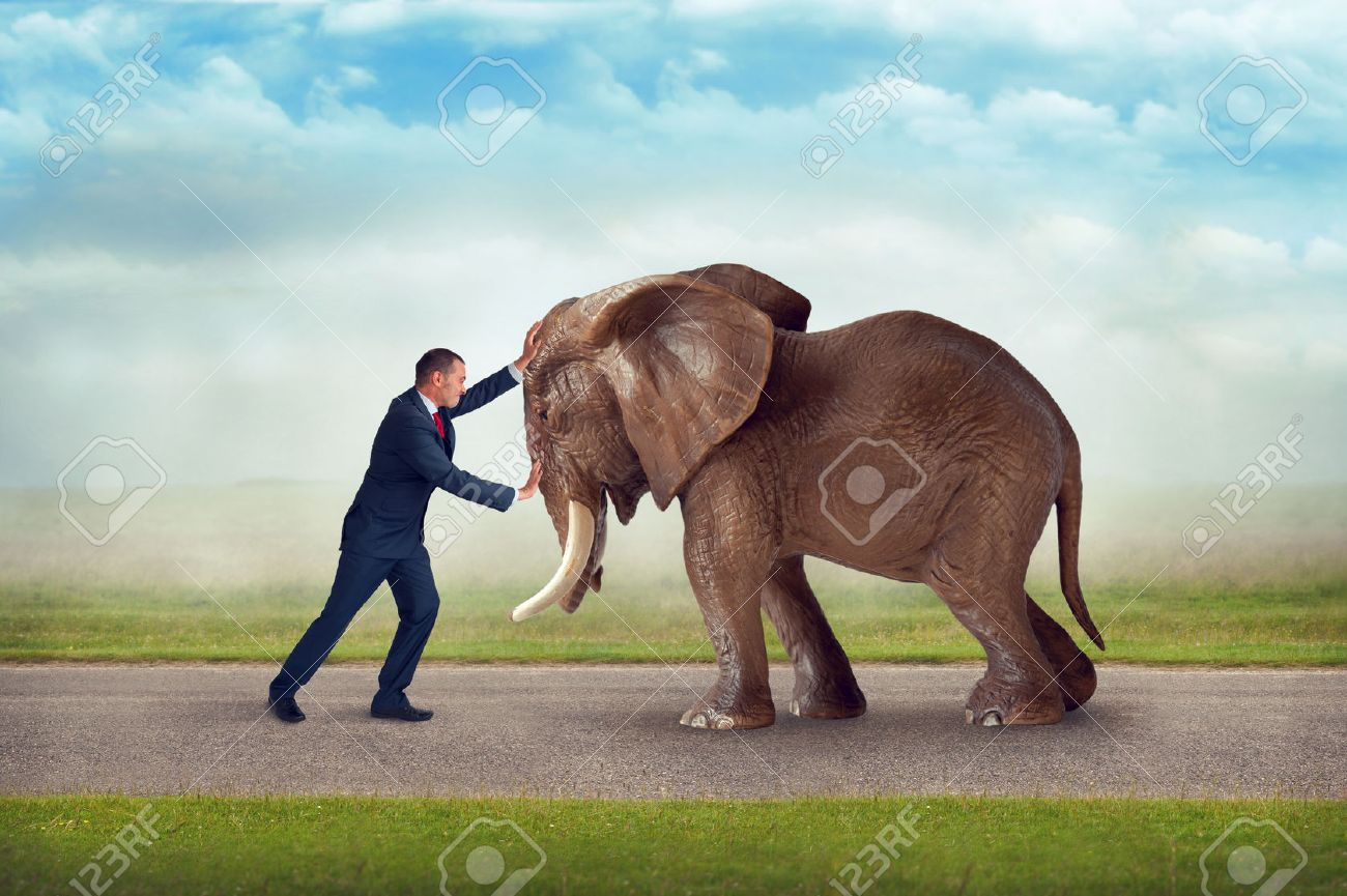 business challenge pushing against elephant obstacle contest of strength Stock Photo - 43621893