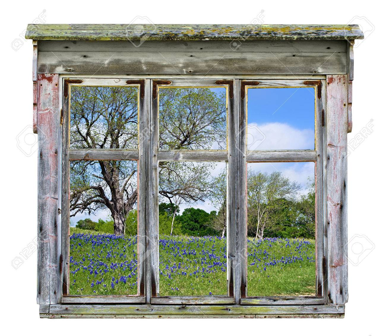 old rustic window frame with texas bluebonnet country vista in spring isolated stock photo