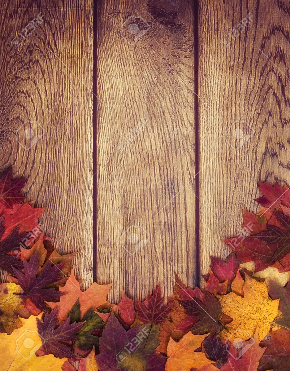 autumn leaves border against wooden background fall background