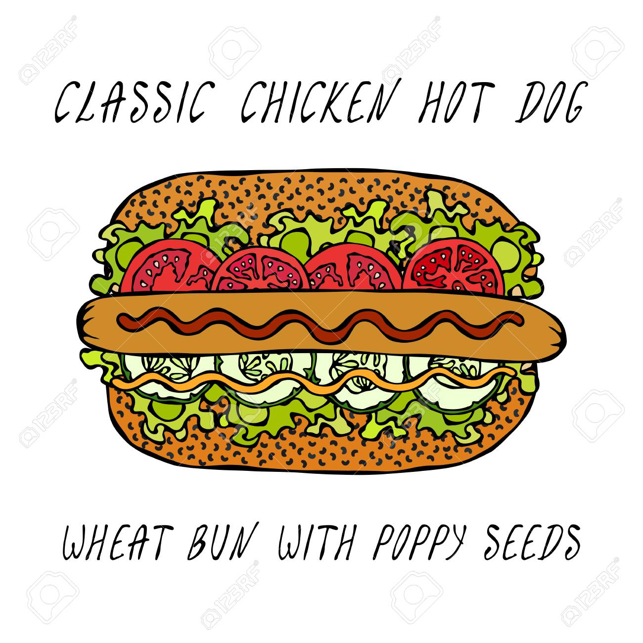 Classic Chicken Hot Dog on a Sesame Bun with Lettuce Salad, Tomato, Cucumber, Mustard, Ketchup. Street Fast Food Collection. Realistic Hand Drawn High Quality Vector Illustration. Doodle Style - 114966642