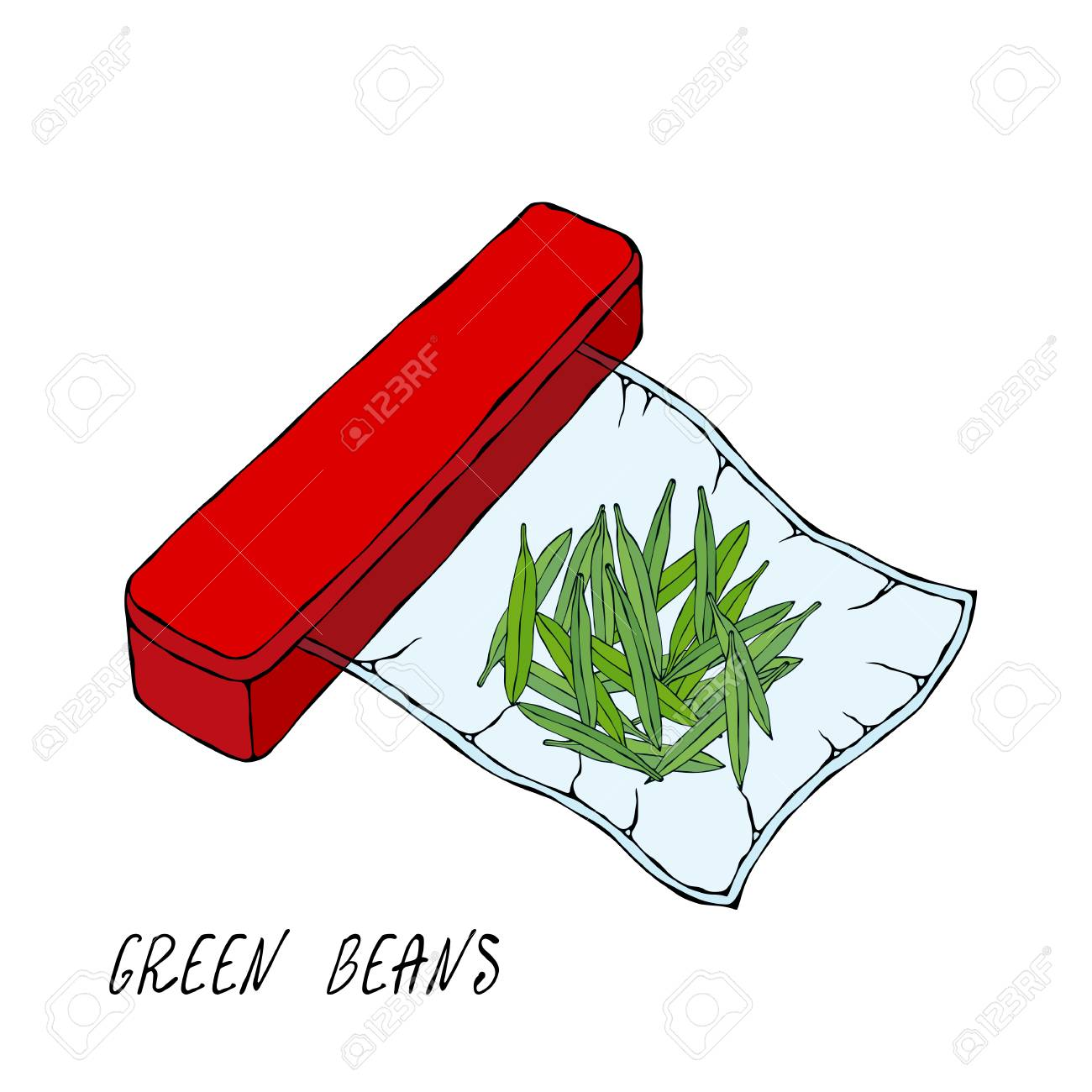 Vacuumizer Food Sealer. Green Beans. For Vegetarians. What is Sous-Vide. Slow Cooking Technology. Chief Cuisine Collection. EPS10 Vector. Hand Drawn Doodle Style Realistic Illustration - 126959100