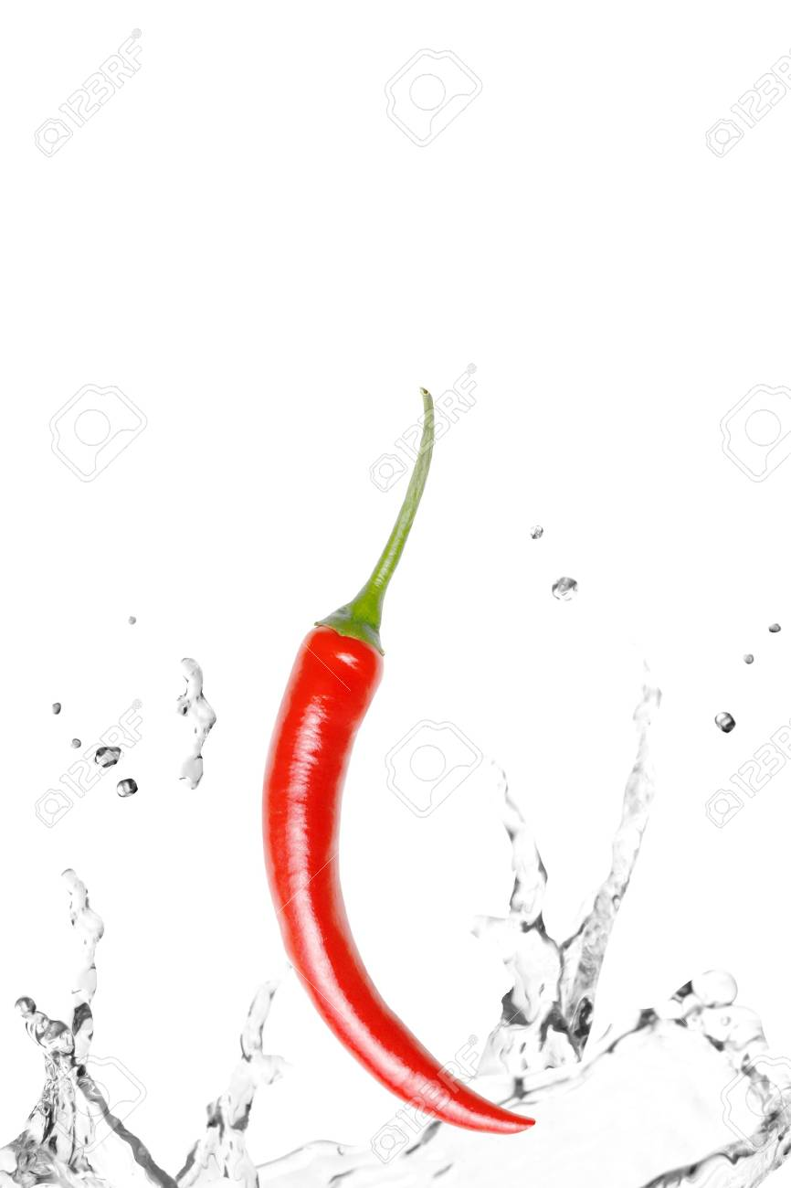 A fresh chili pepper Stock Photo - 5367581