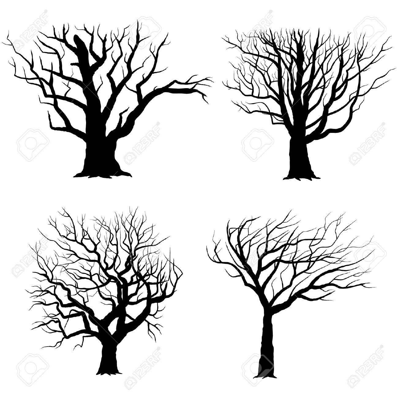 Tree Silhouettes - 41722188