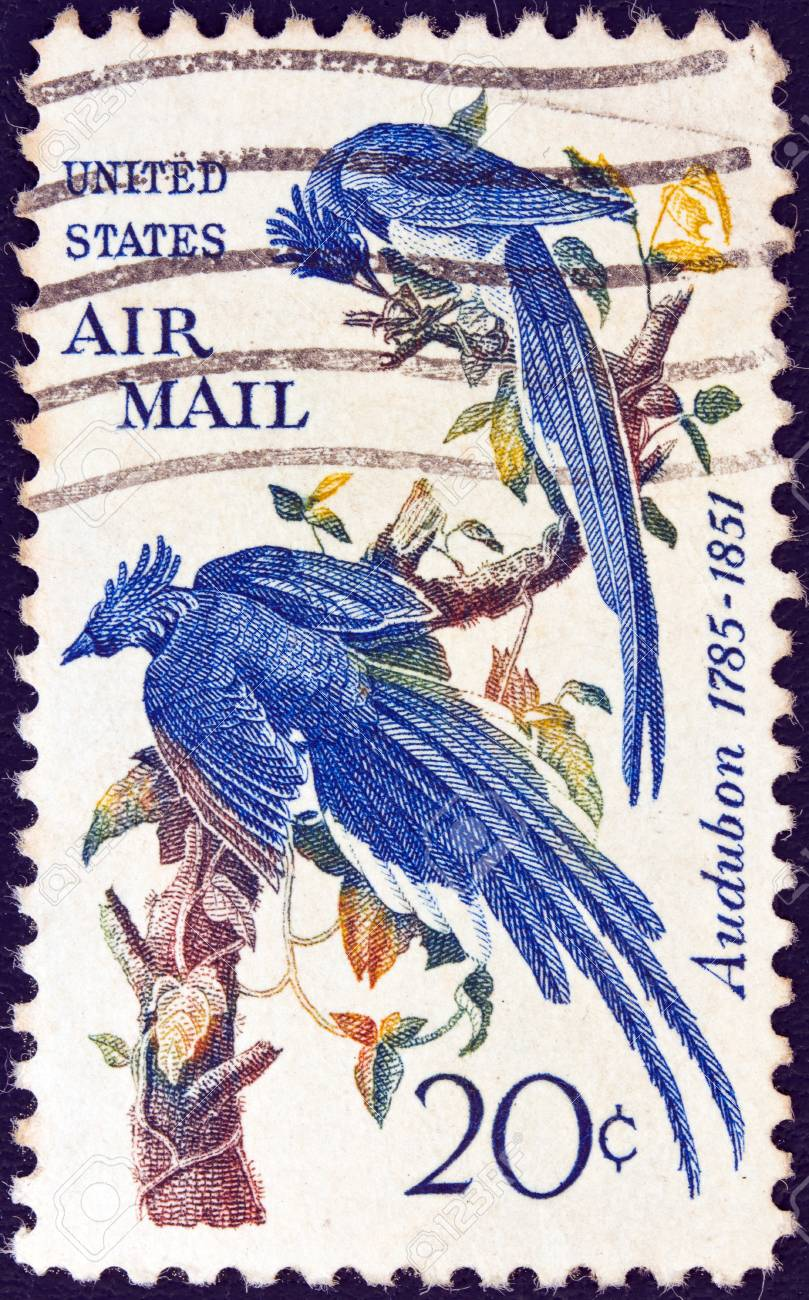 USA - CIRCA 1967: A stamp printed in USA shows Columbia Jays by John James Audubon, circa 1967. Stock Photo - 14136800