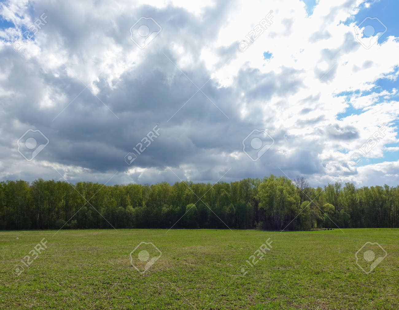 Landscape cloudy sky and green field. Russia. - 123186776