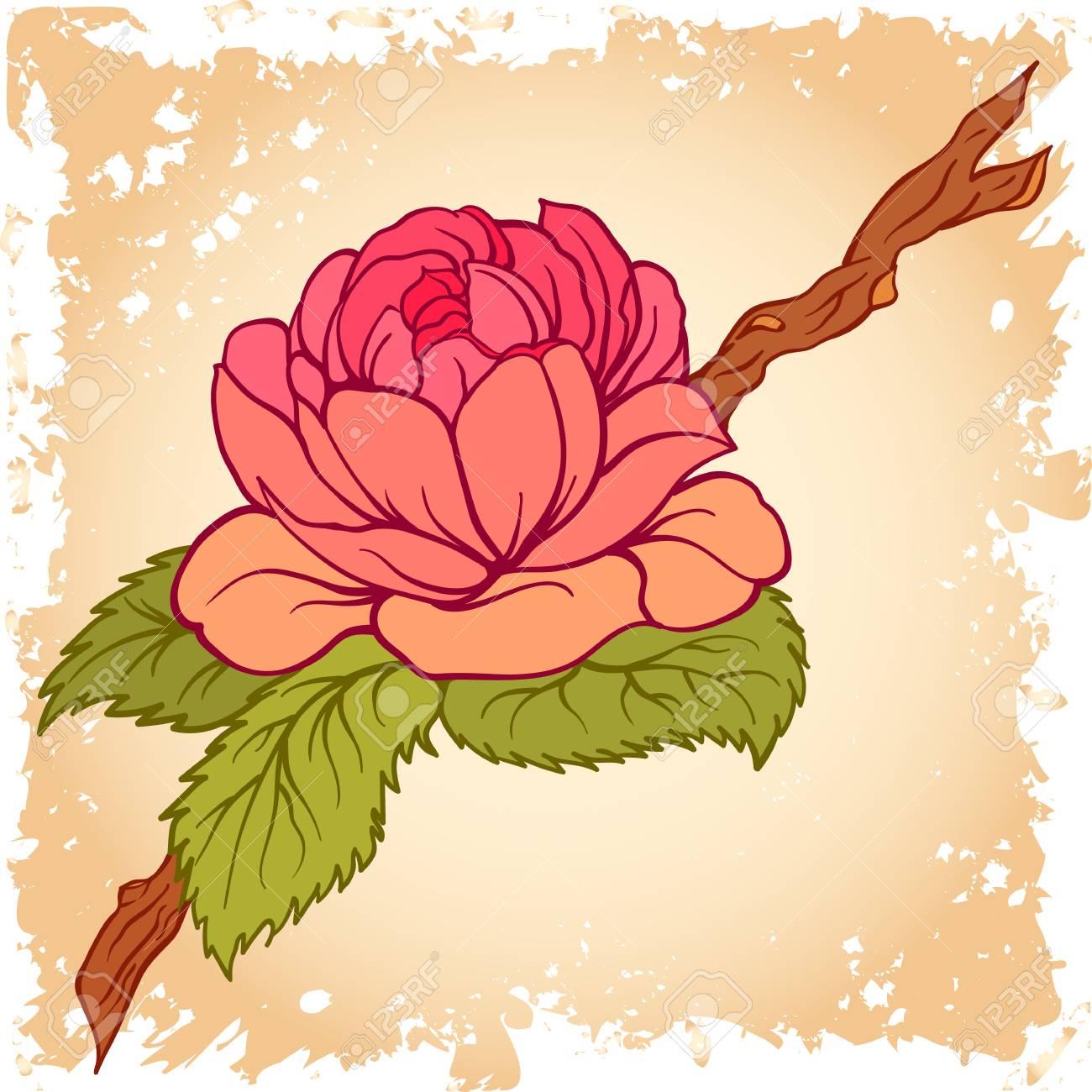 椿の花と枝を残します植物のイラストグリーティング カード招待状