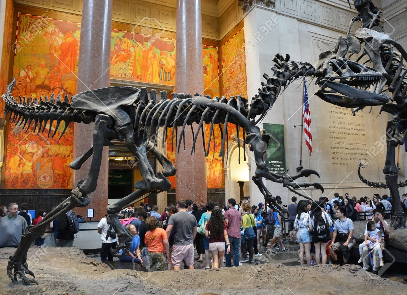 The Famous American Museum For National History Holds A Large - Famous art museums in usa